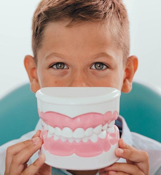 Boy Holding Teeth Model