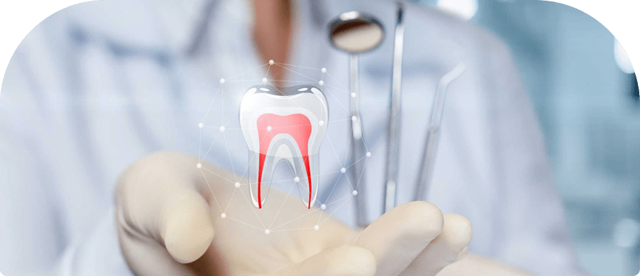 doctor showing a teeth for Root Canal Therapy